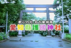 愛知縣護國神社様TVCM「夏越の大祓」篇